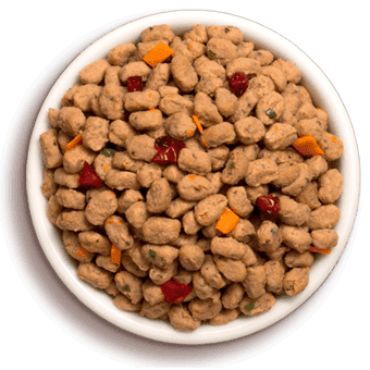 a bowl of freshped vital dog food with cranberries and carrots