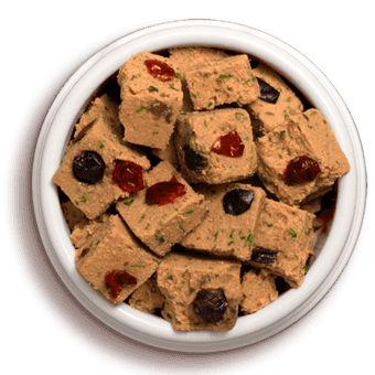 bowl of vital grain free salmon and ocean whitefish dog food