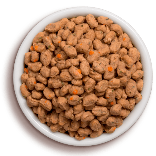 a bowl of frehspet vital grain free chicken & ocean whitefish cat food