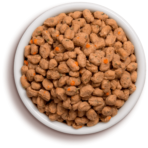 bowl of freshpet select tender chicken cat food