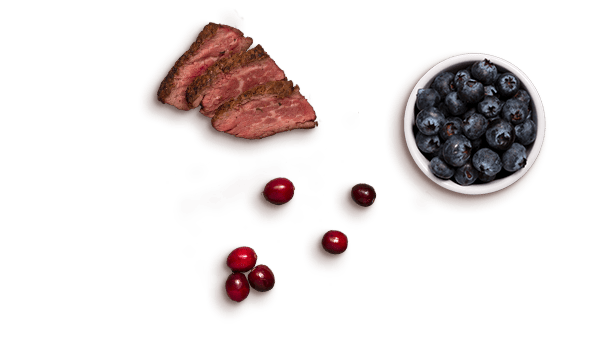 meat slices, cranberries, blueberries
