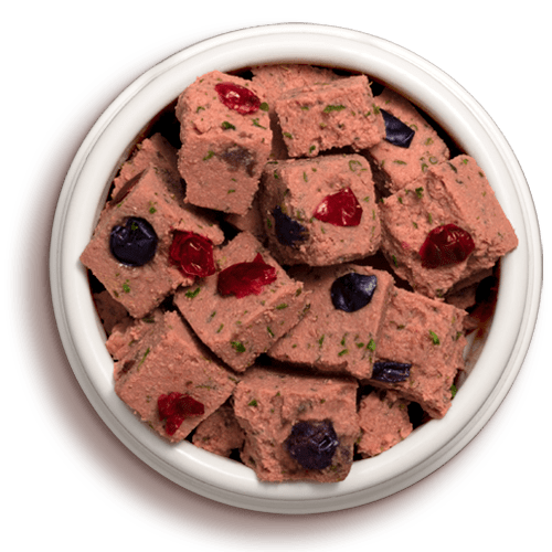 bowl of vital grain free beef and bison dog food