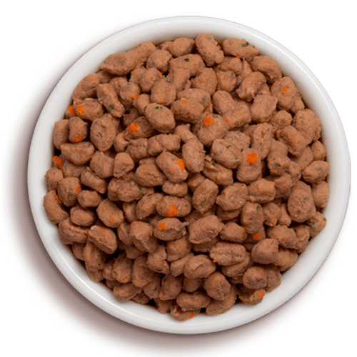 a bowl of freshpet select tender chicken and beef cat food