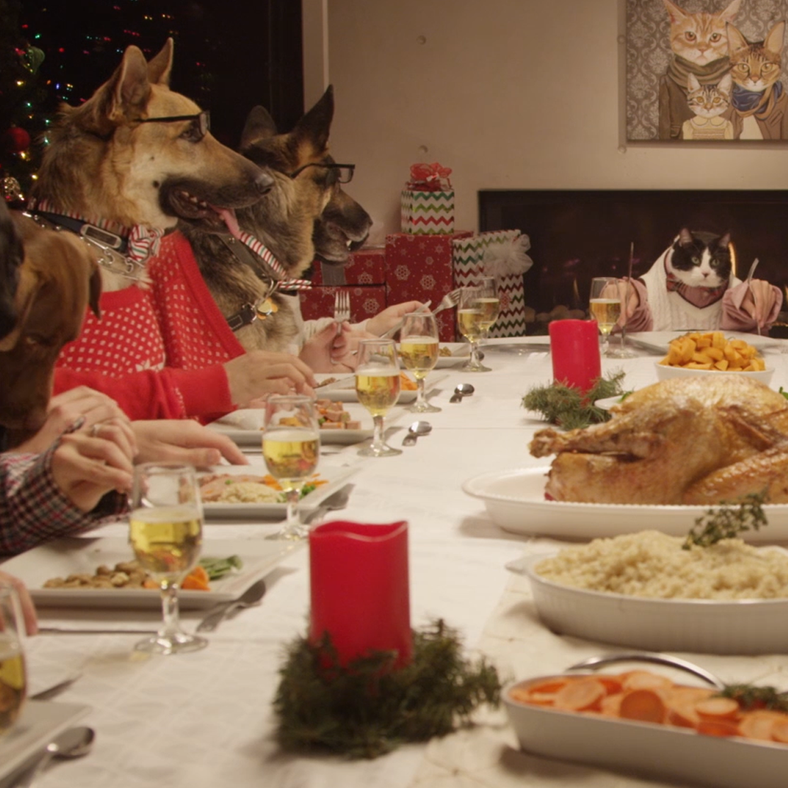 13 Dogs and a Cat Eat With Human Hands in Freshpet's Holiday Extravaganza