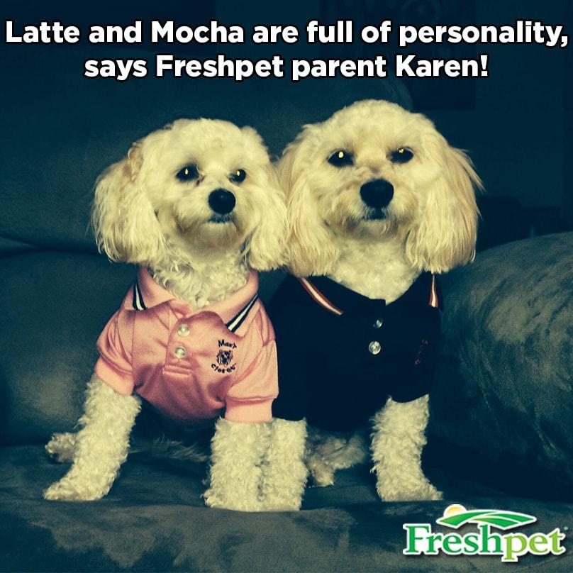 Latte and Mocha