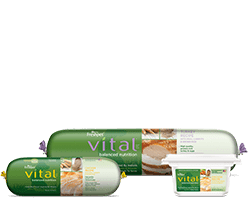Vital_BN_group