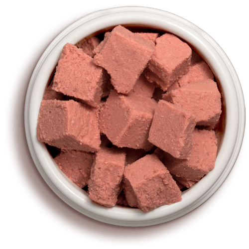 Freshpet Select Chicken and Beef cat roll food in bowl