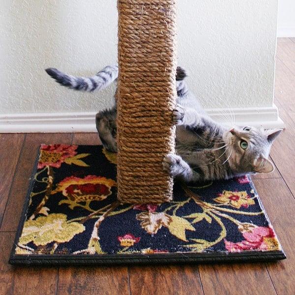 Как своими руками сделать когтедралку для кота своими руками