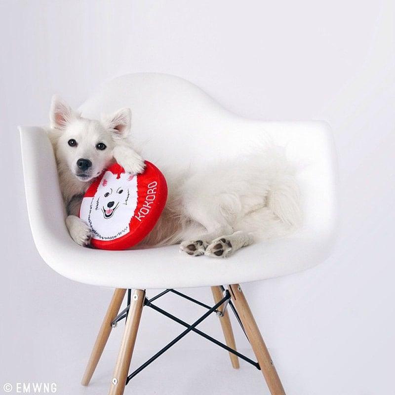 custom_dog_portrait_toys_beds_hoodies_PrideBites_01-1