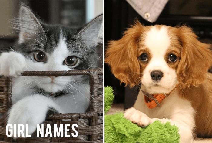 girlnames