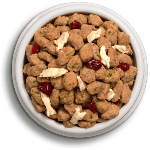 Freshpet Deli Fresh grain free chicken with cranberries and spinach food in a bowl