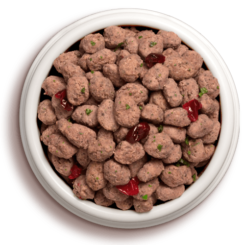 vital pet food in bowl