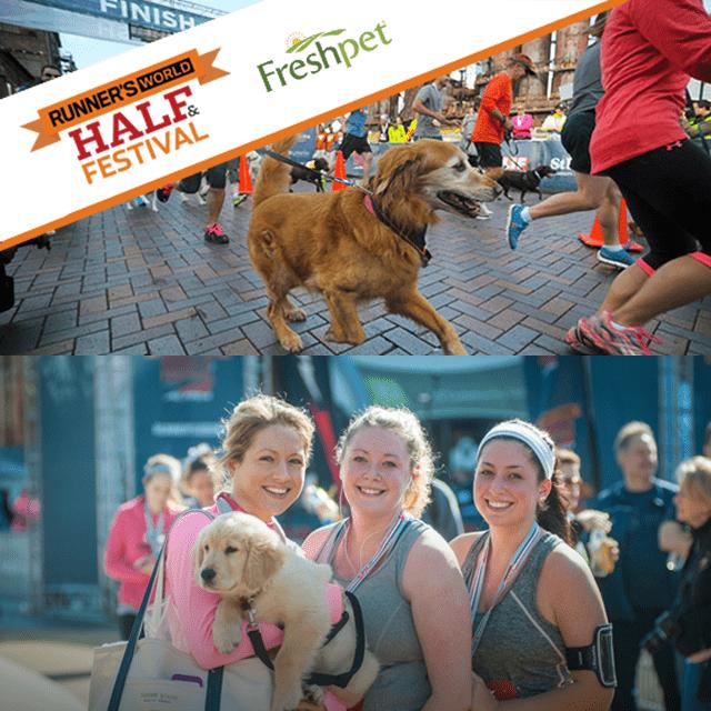 Runner's World Dog Run Sponsored by Freshpet