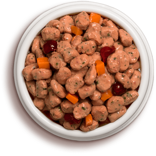 Freshpet Select stews grain free chicken, cranberry, and carrot dog food in a bowl