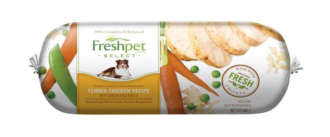 Dog Food Recipes With Grain Allergies No Eggs