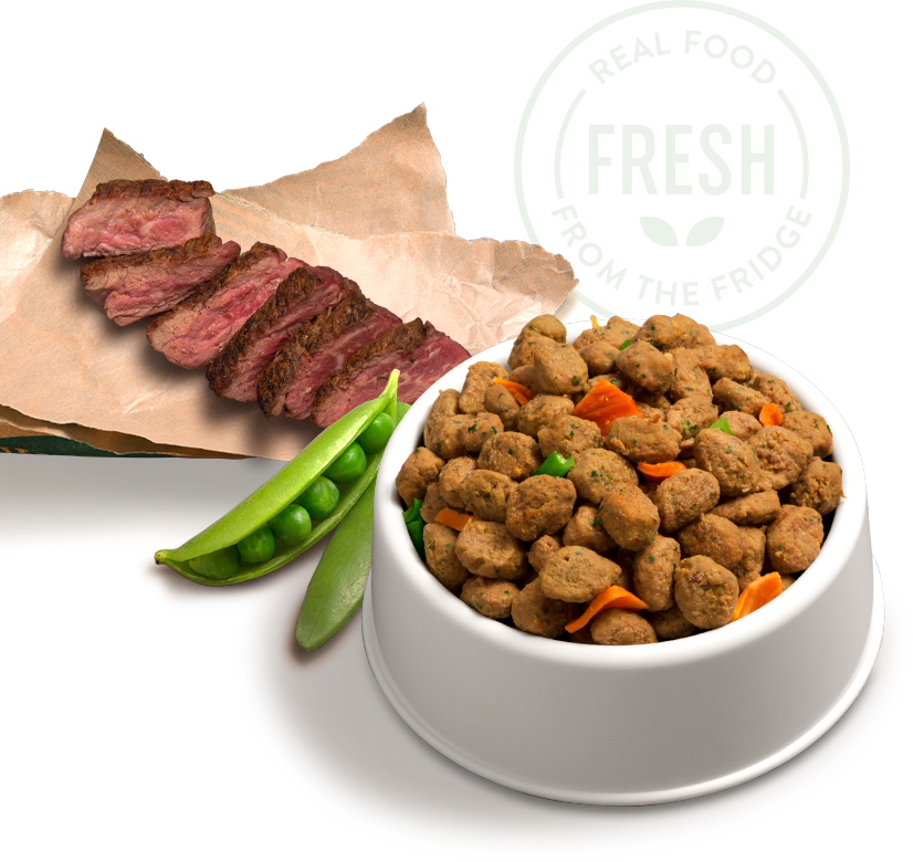 slices of steak, peas in a pod, and freshpet food in a bowl