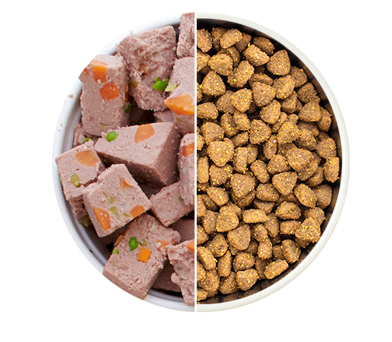 freshpet wet food and dry pet food in a bowl together with a white divider in the center of the bowl