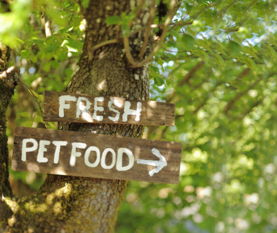 Fresh Pet Food wooden sign pointing to the right nailed to the trunk of a tree