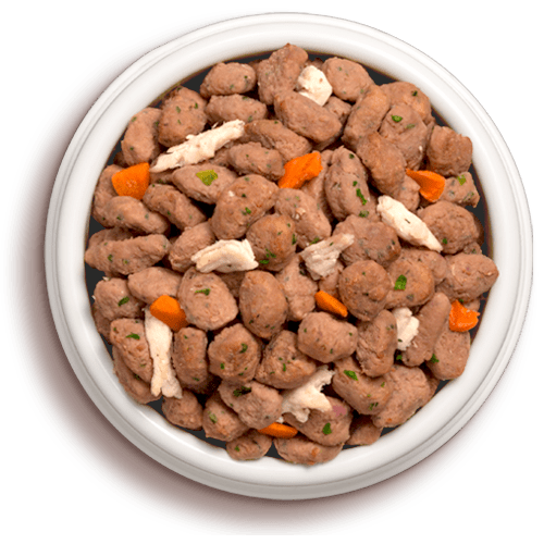 a bowl of freshpet grain free tender chicken with crisp carrots
