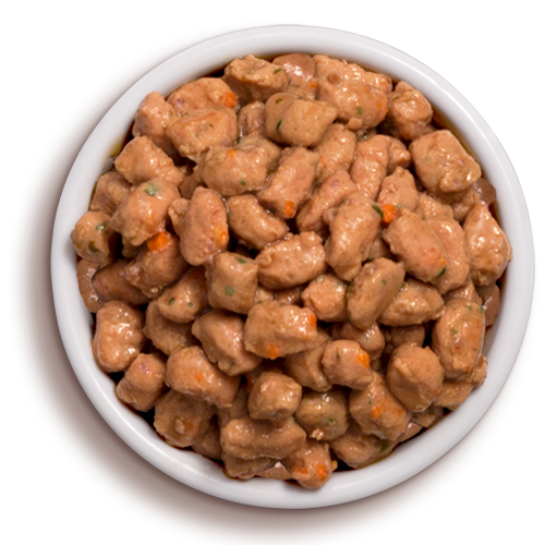 Where To Buy Freshpet Select Cat Food
