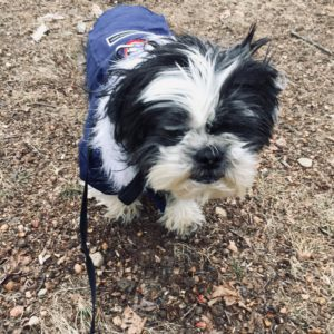 Review photo
