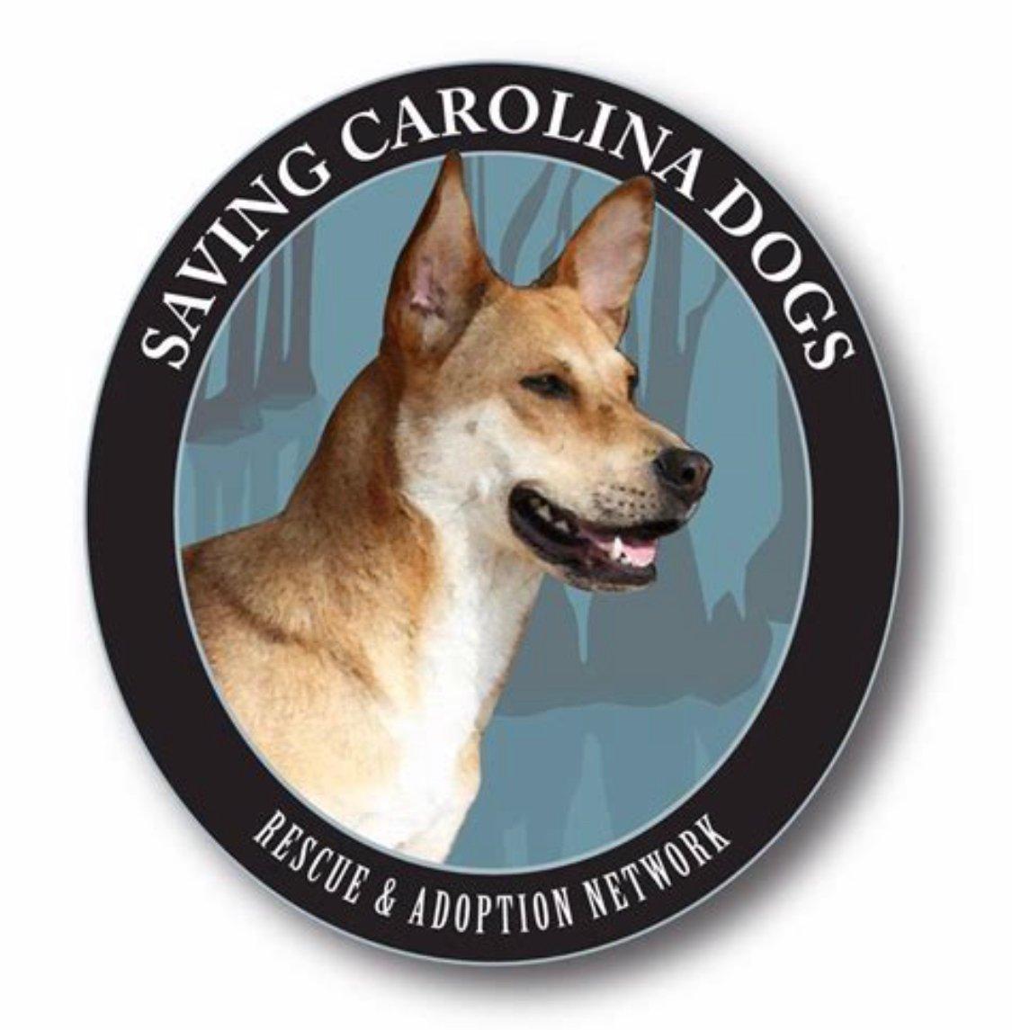 Saving Carolina Dogs Rescue and Adoption Network